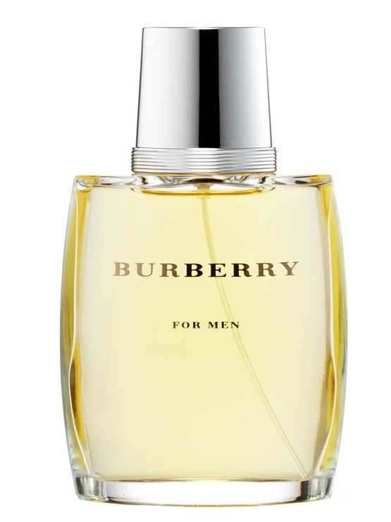 Burberry for Men, edT 100ml by Burberry
